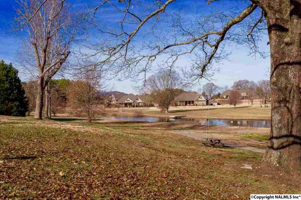 4733 Autumn Dusk Dr., Owens Cross Roads, AL 35763 Photo 18
