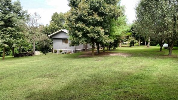 9277 Sc Tate Rd., Omaha, AR 72662 Photo 9