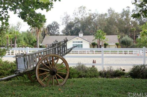 40651 Avenida la Cresta, Murrieta, CA 92562 Photo 21