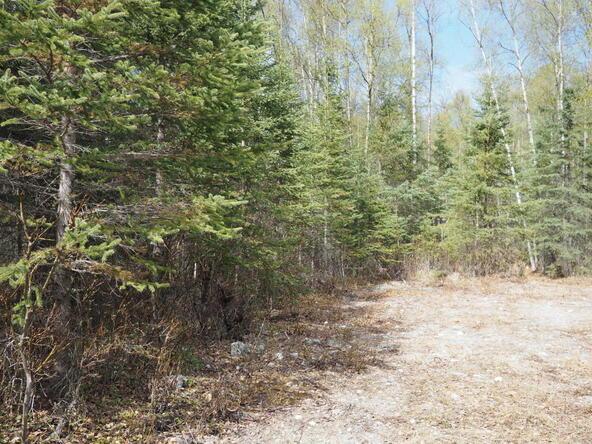 10274 S. Ridge Rd., Wasilla, AK 99654 Photo 14
