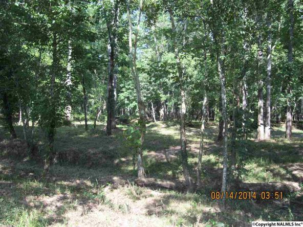 1865 County Rd. 99, Gaylesville, AL 35973 Photo 4