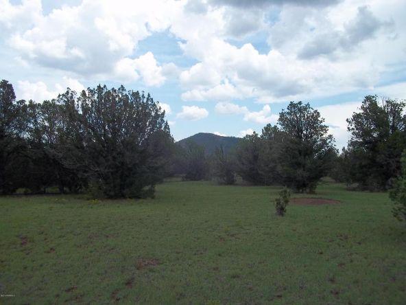 184 E. Bald Eagle Ln., Williams, AZ 86046 Photo 6