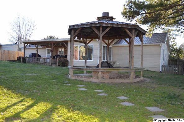 64 County Rd. 531, Moulton, AL 35650 Photo 38
