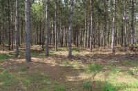 Home for sale: 40 Ac 9th Dr., Adams, WI 53910