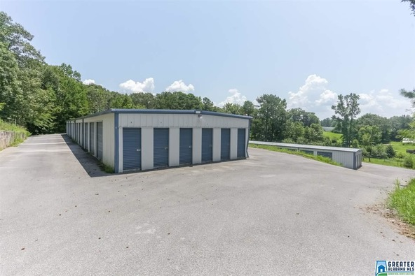 8116 Hwy. 77, Ohatchee, AL 36271 Photo 33