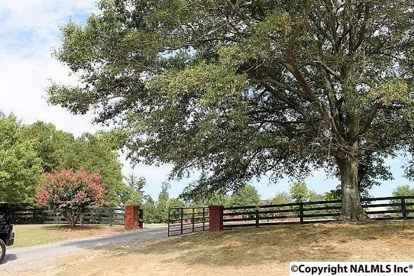 6852 County Rd. 52, Dawson, AL 35963 Photo 4