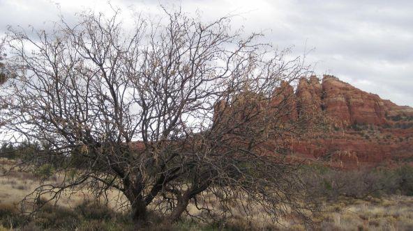 225 Cathedral Ranch, Sedona, AZ 86351 Photo 5