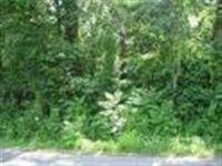 Home for sale: 150 Lexie Ln., Ocoee, TN 37361