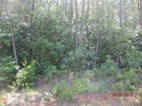 Home for sale: 73 Tanyard Rd., Bowden, GA 30108