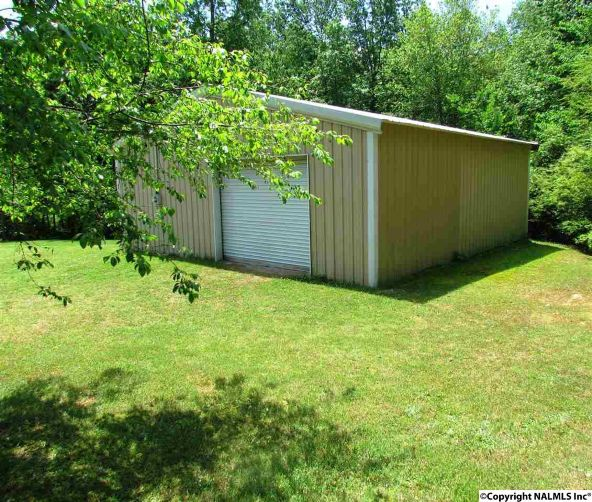 263 County Rd. 49, Section, AL 35771 Photo 18