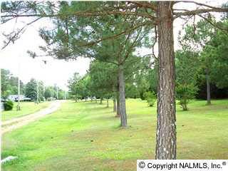 100 Cabana Ln., Albertville, AL 35951 Photo 2