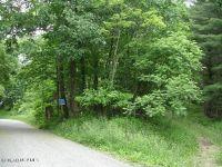 Home for sale: Tbd Lick Ridge Rd., Check, VA 24072