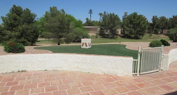 14006 W. Parada Dr., Sun City West, AZ 85375 Photo 28