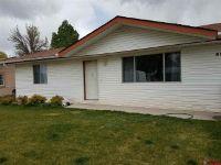 Home for sale: 670 Carpenter Dr., Delta, CO 81416