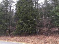 Home for sale: Lots 53d-E. Swamp Rd., Hunlock Creek, PA 18621