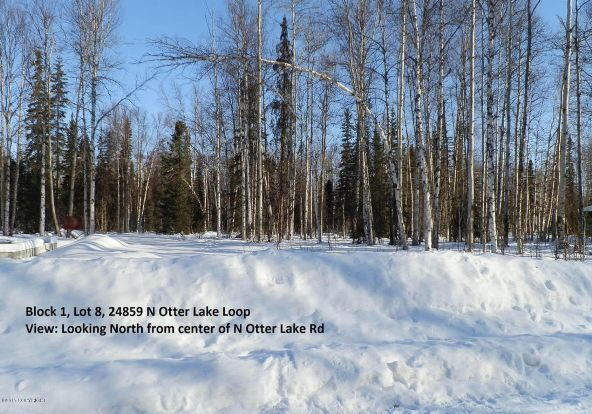 24810 W. Long Lake Rd., Willow, AK 99688 Photo 9