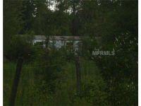 Home for sale: 4609 Ag Rd., Groveland, FL 34736