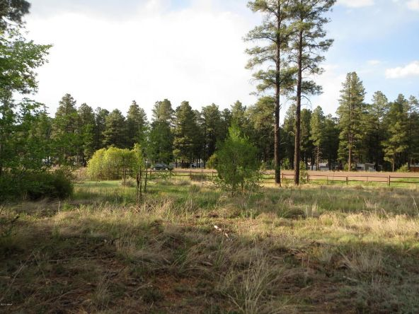 2722 State Rd. 260 Hwy., Overgaard, AZ 85933 Photo 13