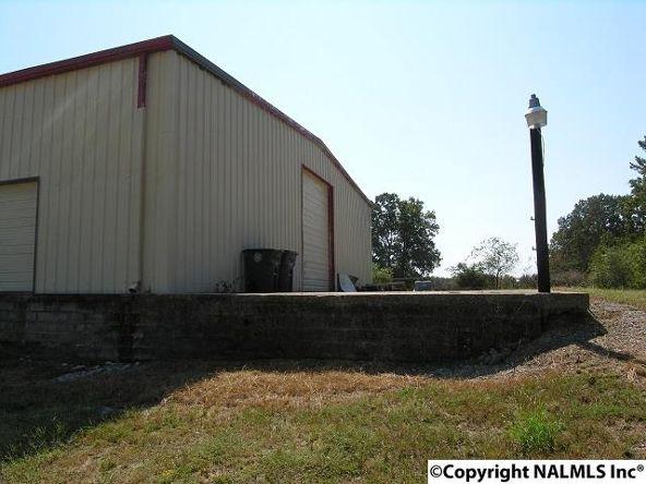 172 County Rd. 299, Trinity, AL 35673 Photo 2