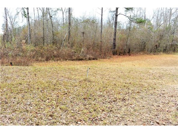 118 Old Colley Rd., Eclectic, AL 36024 Photo 41