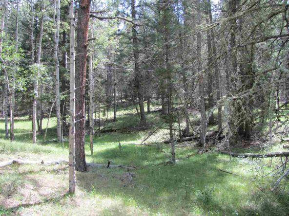 119 W. Pecos Canyon Estates Rd., Tererro, NM 87573 Photo 20