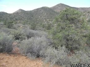 16133 Clove Hitch Hollow, Kingman, AZ 86401 Photo 9