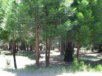 Home for sale: 866 Golf Club Rd., Lake Almanor, CA 96137