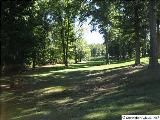 24 Brigadoon Dr., Athens, AL 35611 Photo 3