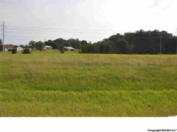 Hwy. 231 N. Little Creek Rd., Arab, AL 35016 Photo 3