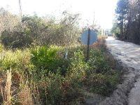 Home for sale: 0000 Chipmunk Trail, Alma, GA 31510