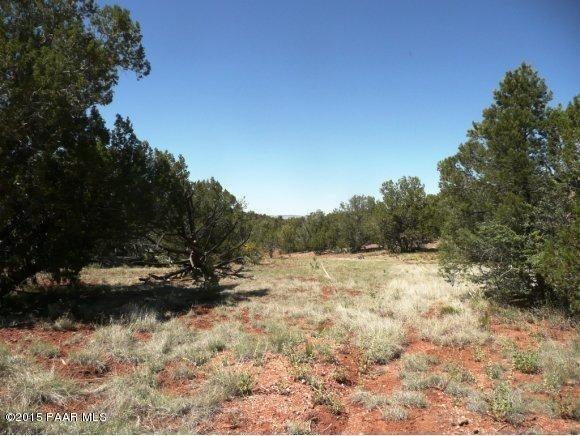 1024 Sierra Verde Ranch, Seligman, AZ 86337 Photo 10