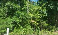 Home for sale: Lt15 Fain & White Oak, Morganton, GA 30560