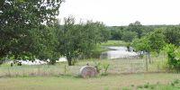 Home for sale: 194 Cr 3825, Bridgeport, TX 76426