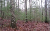 Home for sale: Lt 16 Virginia Ln., Murphy, NC 28906