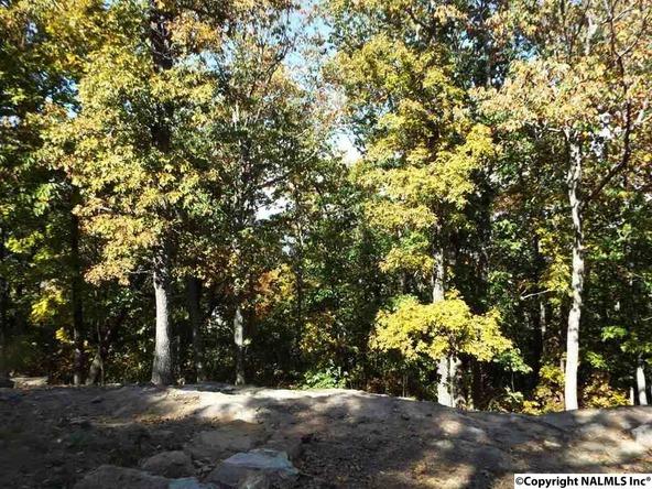 11 S. County Rd. 89, Mentone, AL 35984 Photo 9