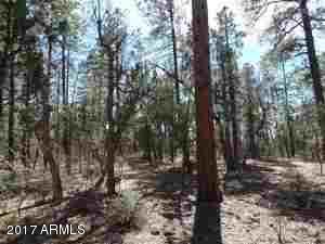 1090 W. Sadler Ln., Lakeside, AZ 85929 Photo 28
