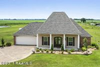 Home for sale: 9731 la Hwy. 82, Abbeville, LA 70510