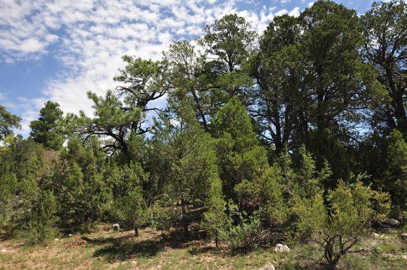 3146 Ranch Rd., Overgaard, AZ 85933 Photo 2