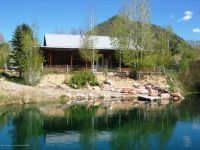 Home for sale: 445 Shewana Ln., New Castle, CO 81647