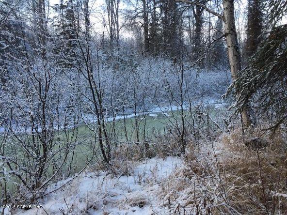 52738 S. Snowy Owl Cir., Willow, AK 99688 Photo 55