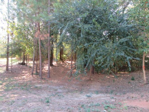 205 Hedgerose Ln., Dothan, AL 36305 Photo 29