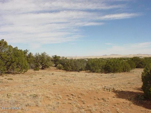 1a N. 8690, Concho, AZ 85924 Photo 36
