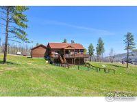 Home for sale: 580 la Escena Dr., Bellvue, CO 80512