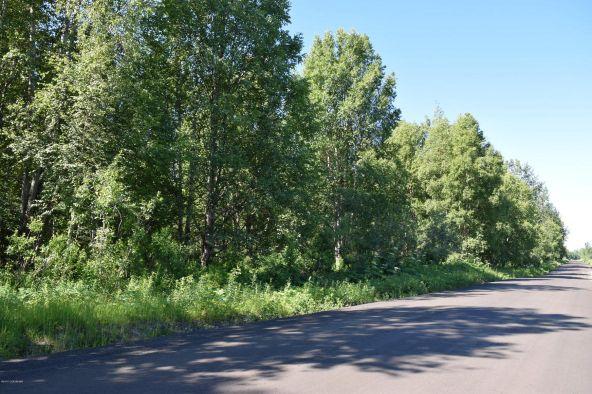 10674 E. Susitna River Rd., Trapper Creek, AK 99683 Photo 5