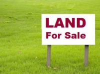 Home for sale: 28 Spout Springs Cv, Muscle Shoals, AL 35661
