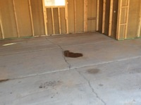 Home for sale: 2589 W. Rolls Rd., Queen Creek, AZ 85142