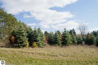 Home for sale: 0018 Lipp Farm Rd., Benzonia, MI 49616
