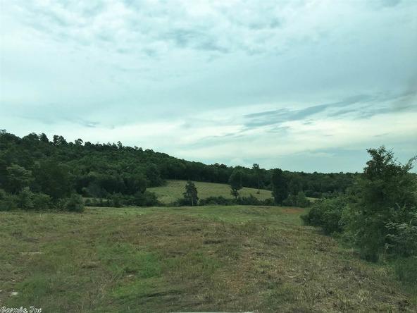 1252 Nc 3600 Rd., Western Grove, AR 72685 Photo 22