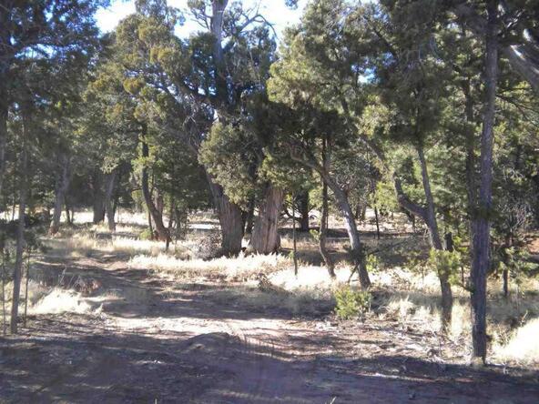5088 Tosca Cir., Pinedale, AZ 85934 Photo 3
