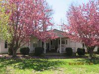 Home for sale: 52 E. Glendale Rd., Golconda, IL 62938